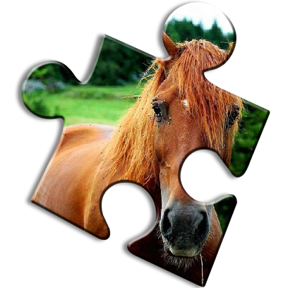 Horse Jigsaw Puzzles - Brain Training Games messages sticker-0