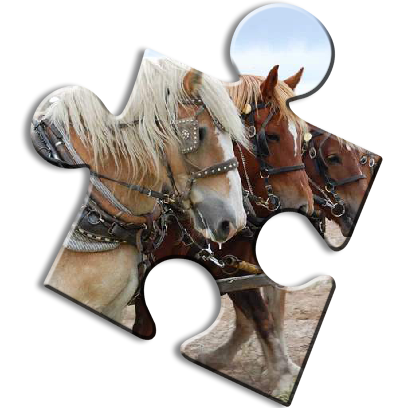 Horse Jigsaw Puzzles - Brain Training Games messages sticker-11
