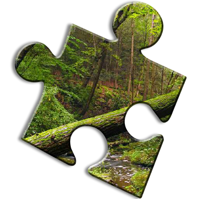 Nature Jigsaw Puzzles messages sticker-6