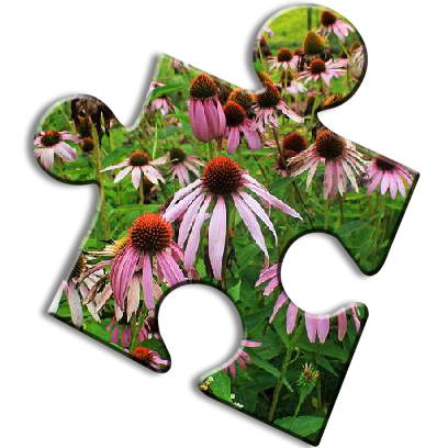 Nature Jigsaw Puzzles messages sticker-11