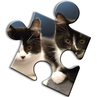 Cat Jigsaw Puzzles messages sticker-6