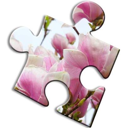 Puzzle Games Jigsaw messages sticker-8