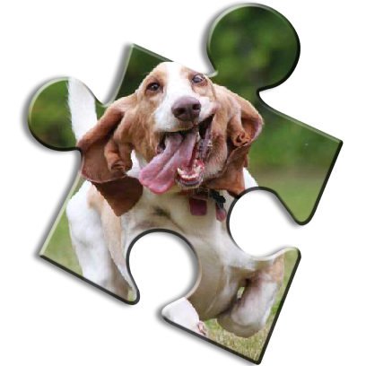 Dog Jigsaw Puzzles messages sticker-8