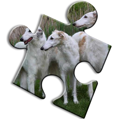 Dog Jigsaw Puzzles messages sticker-3