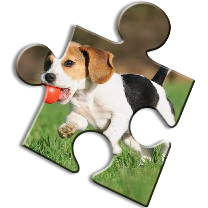 Dog Jigsaw Puzzles messages sticker-6