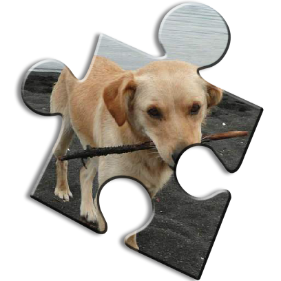 Dog Jigsaw Puzzles messages sticker-9