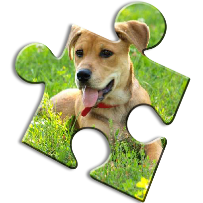 Dog Jigsaw Puzzles messages sticker-10