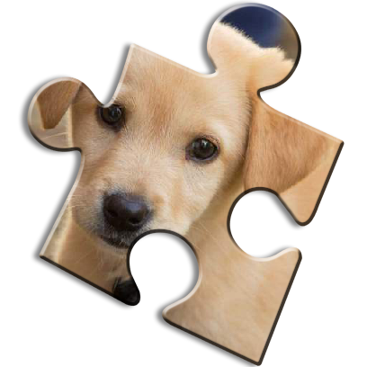 Dog Jigsaw Puzzles messages sticker-2