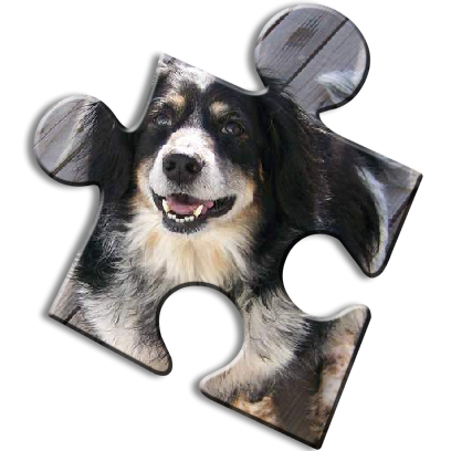 Dog Jigsaw Puzzles messages sticker-4