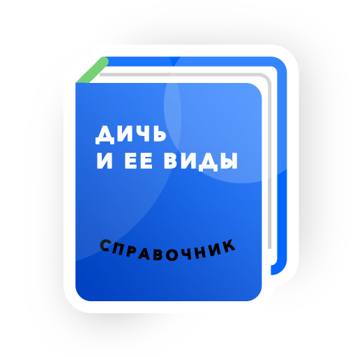 Stepik: best online courses messages sticker-8