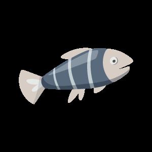 Big Fishy messages sticker-0