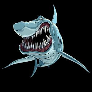 Shark Stickers messages sticker-4