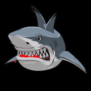 Shark Stickers messages sticker-7