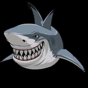 Shark Stickers messages sticker-5