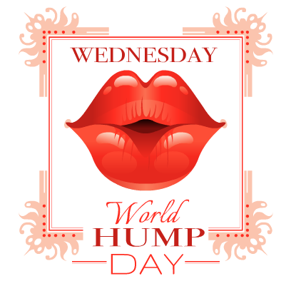 Hump Day Stickers messages sticker-4