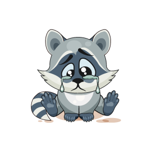 Raccoon Stickers messages sticker-2