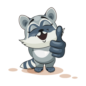 Raccoon Stickers messages sticker-7
