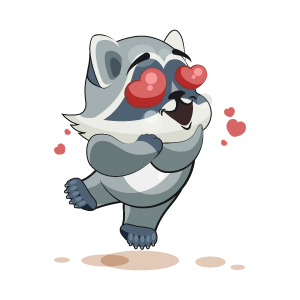 Raccoon Stickers messages sticker-9