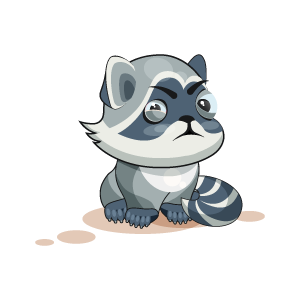 Raccoon Stickers messages sticker-0