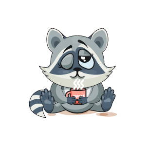 Raccoon Stickers messages sticker-4