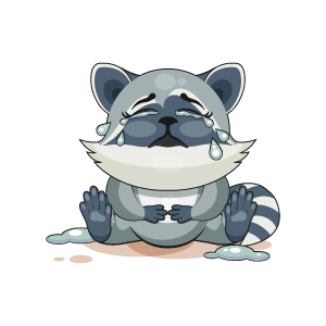 Raccoon Stickers messages sticker-11