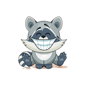 Raccoon Stickers messages sticker-10
