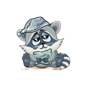 Raccoon Stickers messages sticker-8