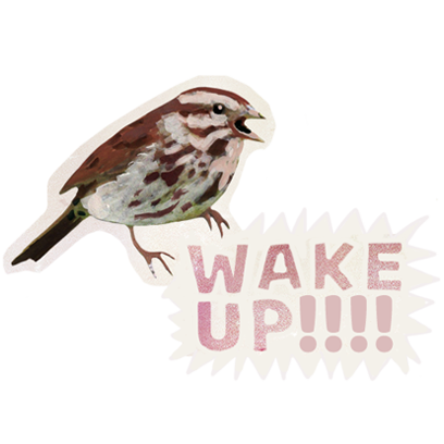 Dawn Chorus messages sticker-4