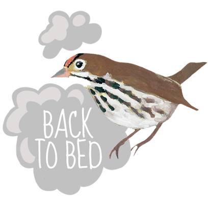 Dawn Chorus messages sticker-11