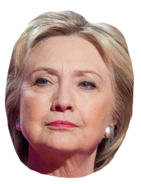 Hillary Sticker Pack messages sticker-5