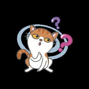 Cats Buddies Stickers messages sticker-7