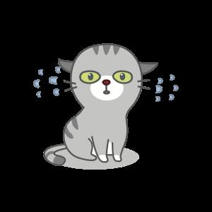 Cats Buddies Stickers messages sticker-5