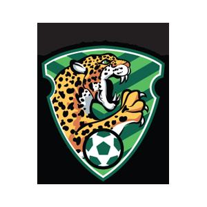 Liga Bancomer MX Sticker App Oficial messages sticker-5