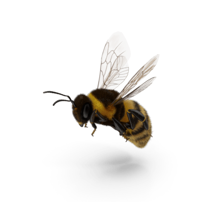 Bugs by PixelSquid messages sticker-6