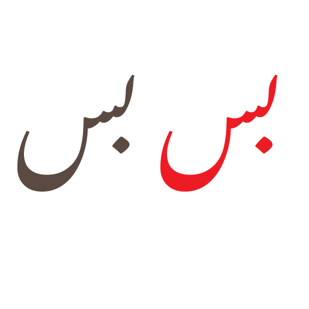 Desi Urdu messages sticker-9