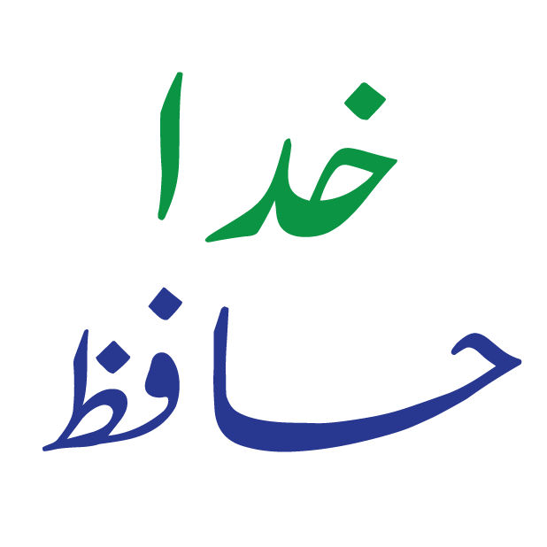 Desi Urdu messages sticker-7