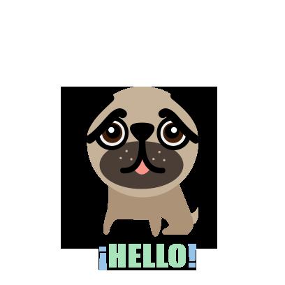 BUBU Pug messages sticker-4