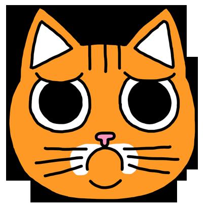 Orange Cat Stickers messages sticker-6