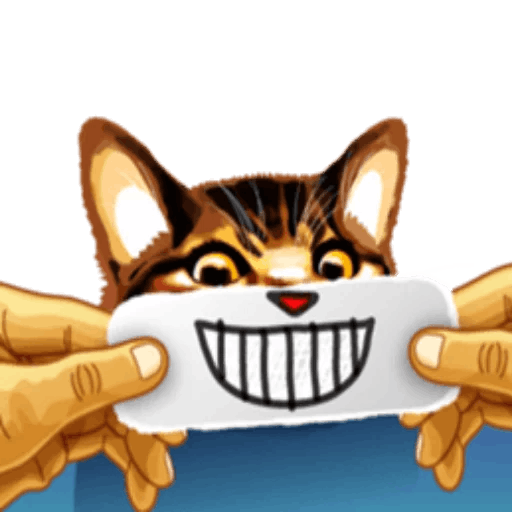 Meme cat messages sticker-0