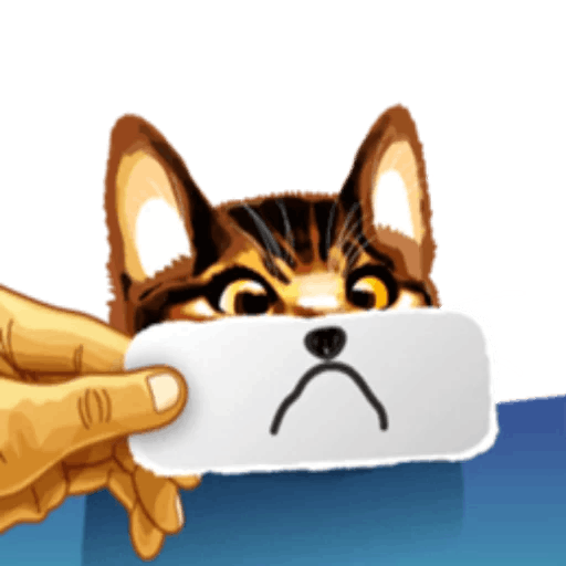 Meme cat messages sticker-5