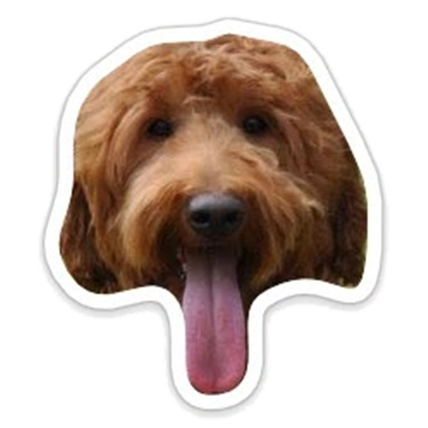 Louie - Dog Stickers for iMessage messages sticker-3
