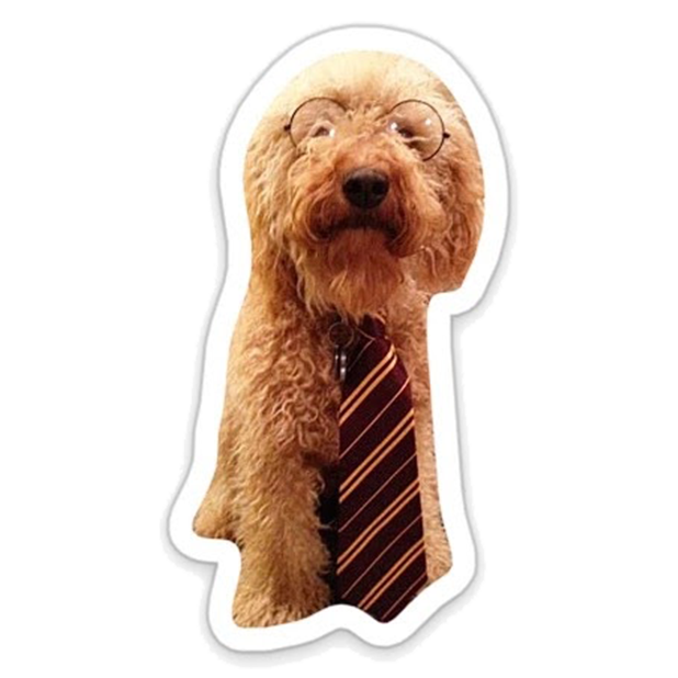 Louie - Dog Stickers for iMessage messages sticker-10