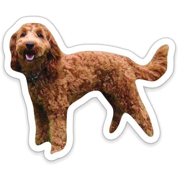 Louie - Dog Stickers for iMessage messages sticker-2