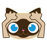 Catmoji - Cat Sticker Pack for Cat Lovers messages sticker-5