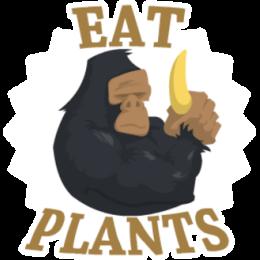 Vegan stickers by Haydar messages sticker-5