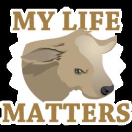 Vegan stickers by Haydar messages sticker-0