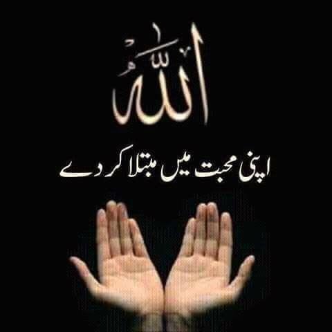 Muslim - Quran, Prayers, More messages sticker-11