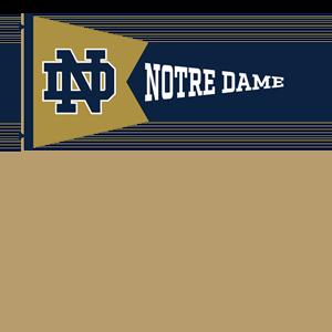 Notre Dame Stickers messages sticker-9