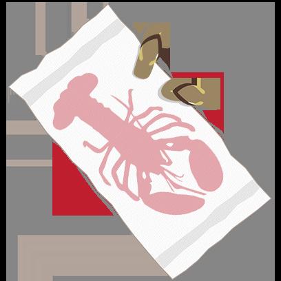 Island Adventure Catalog Stickers messages sticker-11