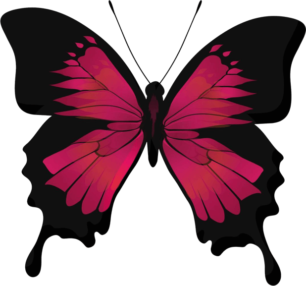 Beautiful Butterfly Sticker Pack messages sticker-6